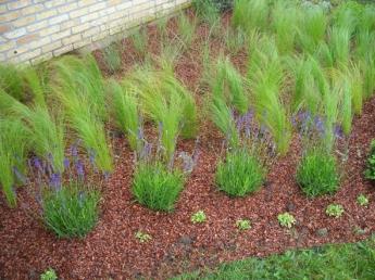 Plantations la nature au jardin paysagiste lille for Plantation au jardin